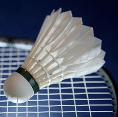 Badminton Bird